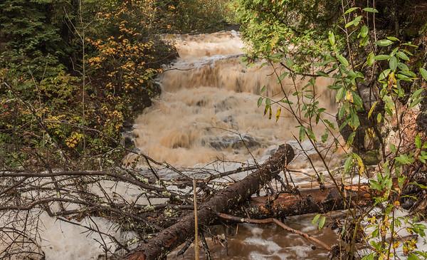 Nelson's Creek