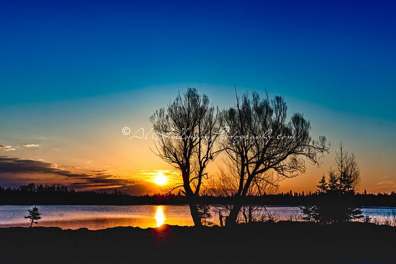 Northern Sunrise_10-1
