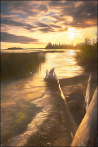 Frederickhouse-Sunrise_25-Tp-4-S