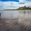 Border Control at Bamburgh