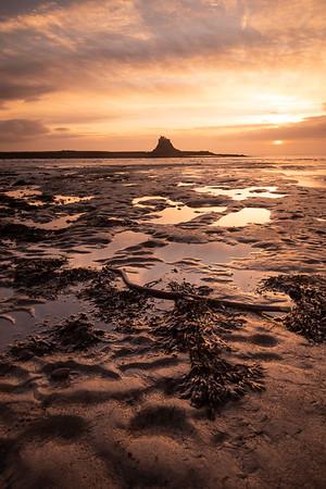 Holy Island Dawn