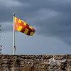 Northumberland Flag
