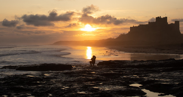 Catching The Sun, Photographer at Bamburgh