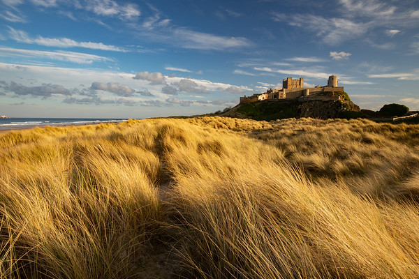 Warm Light, Bamburgh