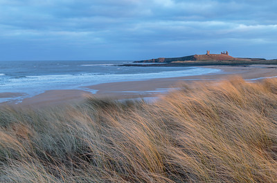 Dunstanburgh Castle from marram grass dunes in Embleton Bay