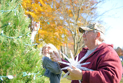 Ann and Bob Sabol, of Northumberland, string lights and put up a star on the top of one of 20 christmas trees lining King Street Park in Northumberland on November 16, 2012. The S. Luther Savidge Charitable Trust donated $5000 for new decorations for the park this year and the Soutside Fire Department of Riverside provided the trees. Local civic groups will be decoarting the trees, there are still trees left to be decorated.