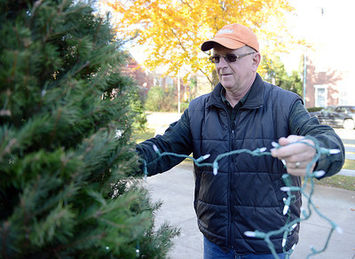 Northumberland Mayor Len Zboray puts lights onto one of the twenty Christmas trees that line King Street Park on November 16, 2012. The S. Luther Savidge Charitable Trust donated $5000 for new decorations for the park this year and the Soutside Fire Department of Riverside provided the trees. Local civic groups will be decoarting the trees, there are still trees left to be decorated.
