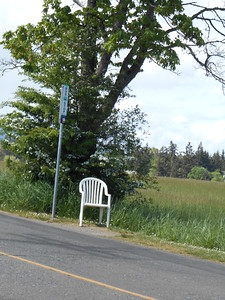 Road into Butchart Gardens - Each bus stop had one chair