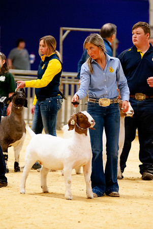 2020_nw_district_goats011