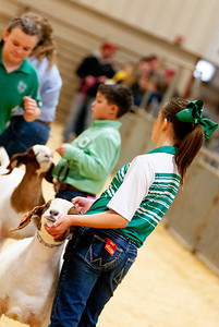 2020_nw_district_goats005