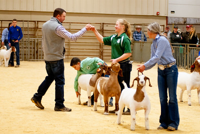2020_nw_district_goats021