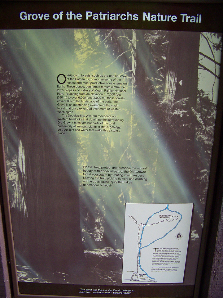 Our next stop was the Grove of the Patriarchs.  This mile-long trail takes you to some of the tallest, oldest trees in the park.  The little inset map on this sign shows that the Ohanapecosh River (in blue) splits to create an island.  Being on an island, the trees were protected from wildfires.  The island is also in a valley, which shields the trees from wind.  This combination is why the trees have survived to become so tall.<br /> [Mount Rainier]