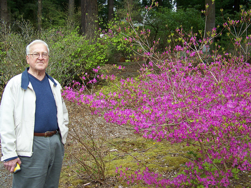"Dad and I visited the <b><a target=""_new"" href=""http://www.rhodygarden.org"">Rhododendron Species Botanical Garden</a></b> in Federal Way right after we got back from our Reno trip.  Because of our unusually-late winter weather this year (it snowed in Seattle on April 18th!!), there weren't as many blooms as I was expecting.  But the ones that were open were spectacular!"