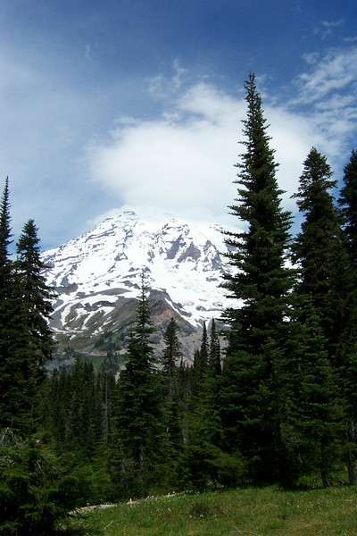 Mount Rainier from the Nisqually Vista Trail.