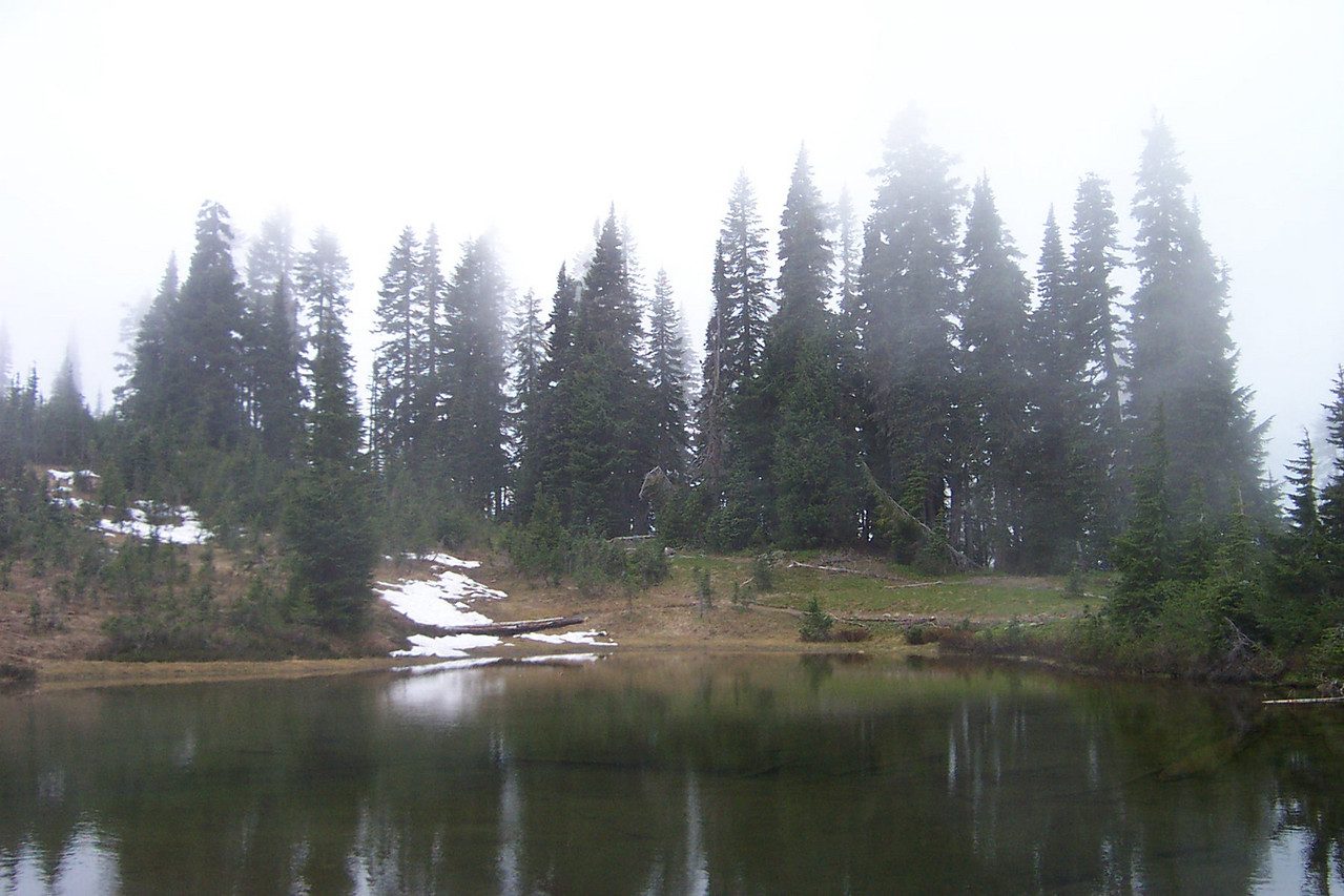 It was very foggy at Tipsoo Lake, which is in the northeast part of the park.