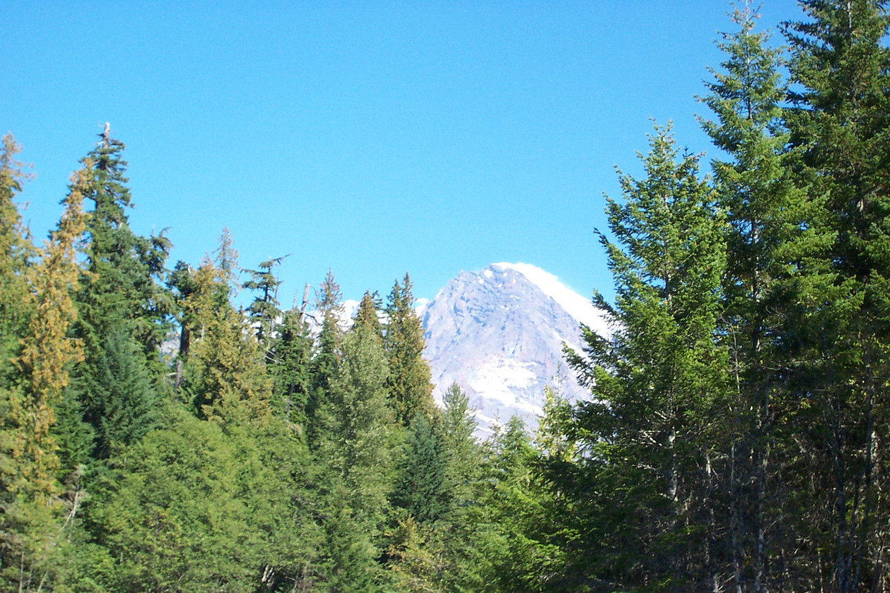 The winter snows had not yet started.  I don't think I've ever seen the Mountain with less snow on it.