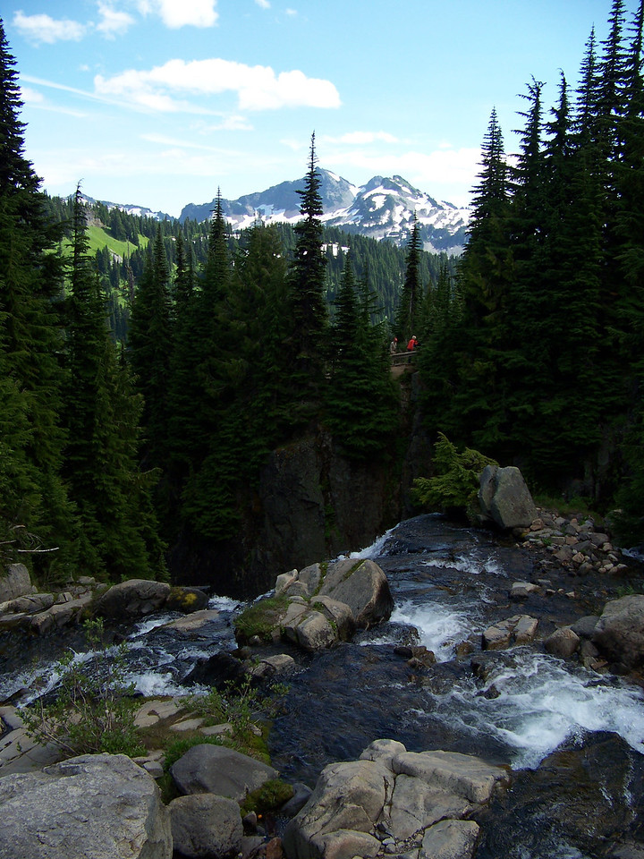 The crest of Myrtle Falls.