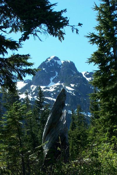 At Mount Baker.