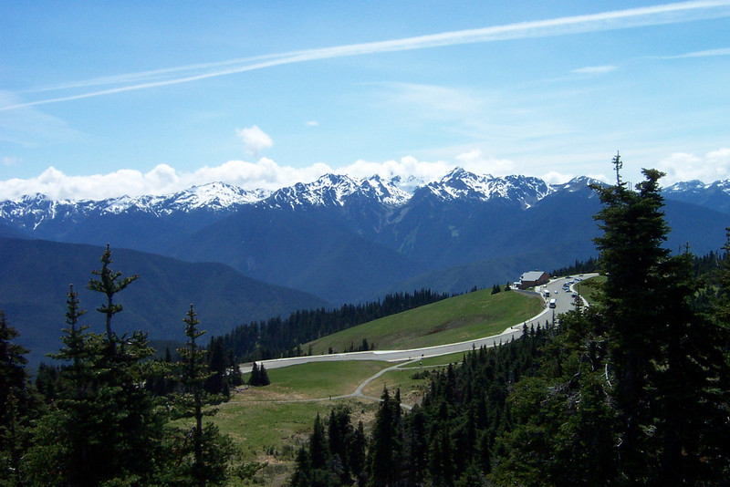 We had a terrific day at Hurricane Ridge in Olympic National Park!