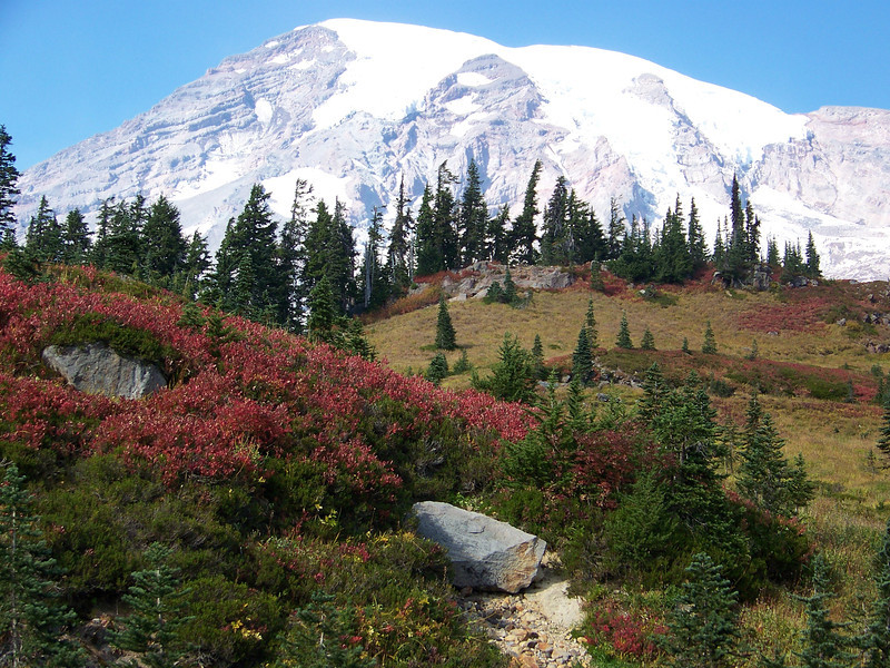 An incredible fall day at Mount Rainier.