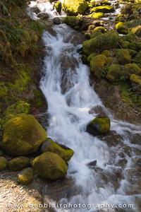 Roadside Falls 1