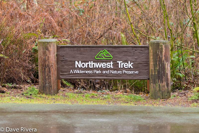 Northwest Trek Wildlife Park - Eatonville WA
