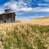 Palouse image with wheat field, old grain barn