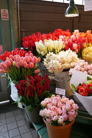 Tulip season in full swing at Pike Place