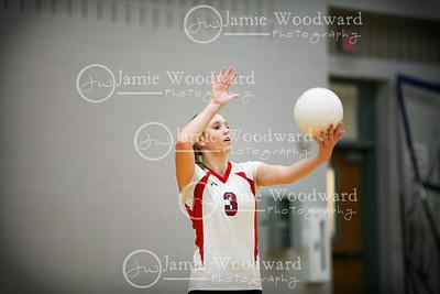 nw volleyball -varsity, jv & freshmen 2010