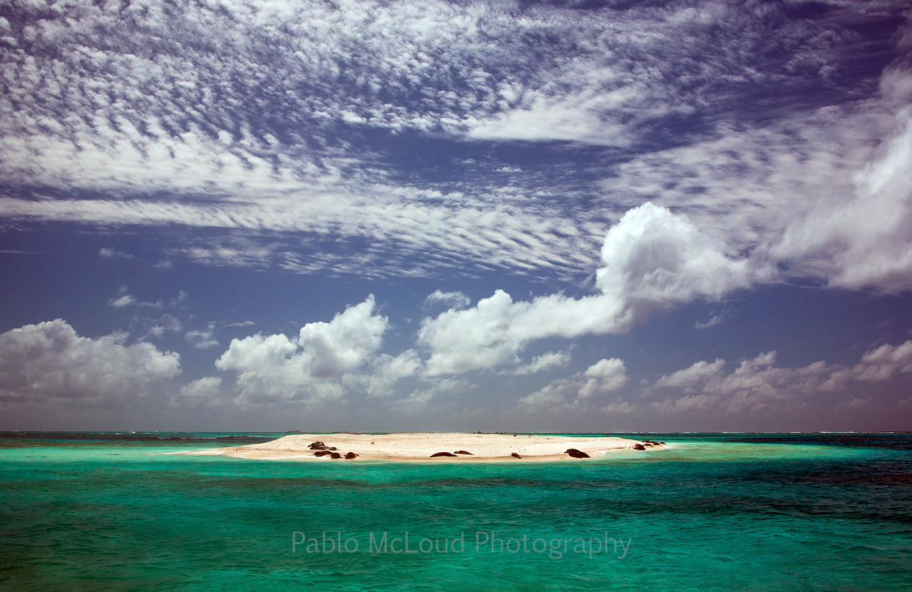 Trig Island
