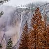 Yosemite Nataional Park