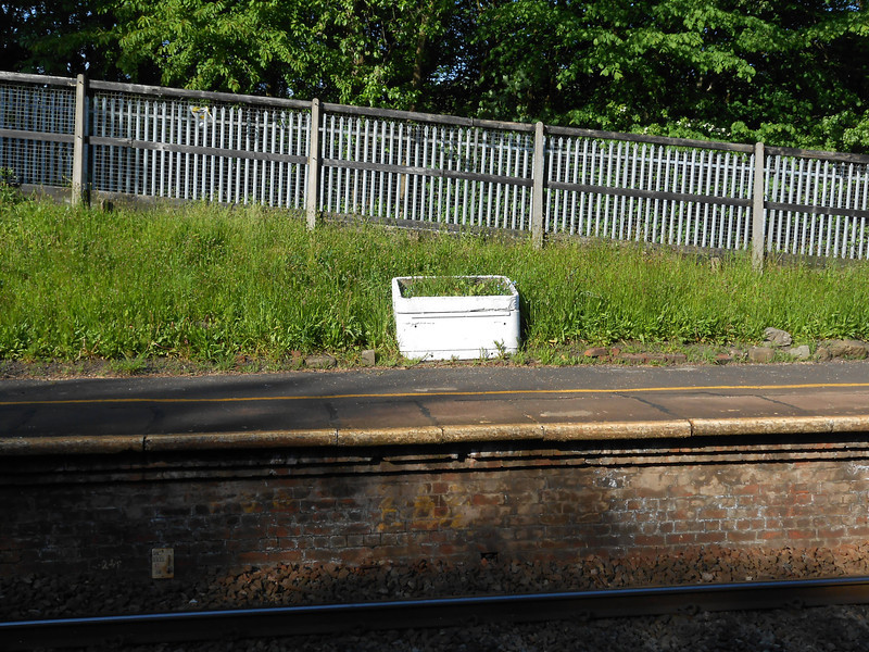 Pic by Liz <br /> <br /> The weed filled plant box on the Manchester Bound platform of which more later