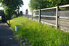 The very overgrown embankments and weed / grass full planter