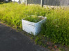 PIc by Liz <br /> <br /> of the neglected planter