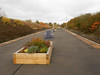 Pic by Liz<br /> <br /> Since my last visit here in July 2011 the whole platform has been <br /> <br /> tarmacked and new flower beds have appeared on the platforms