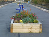 pic by Liz <br /> <br /> shot of the Platform showing the new benches and flower bed <br /> <br /> boxes looking towards Guide Bridge