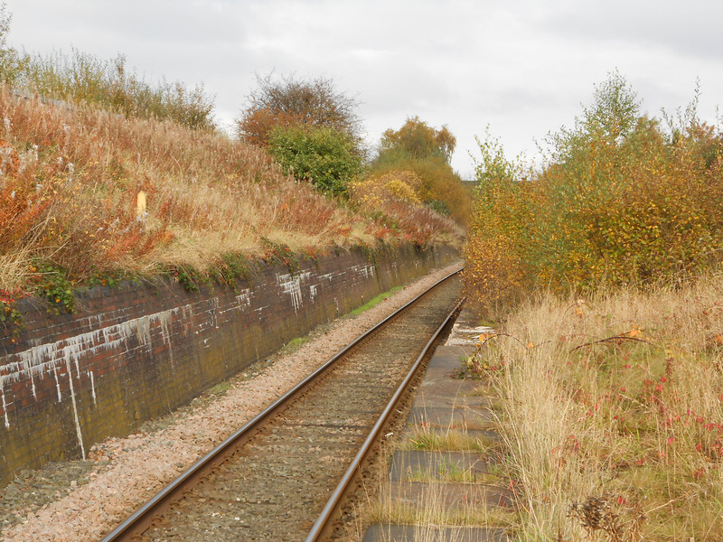 pic by Liz <br /> <br /> looking twoards Guide Bridge from the Guide Bridge bound platform <br /> <br /> at one time as can be seen the platforms where much longer but <br /> <br /> they have now vanished under trees and bushes