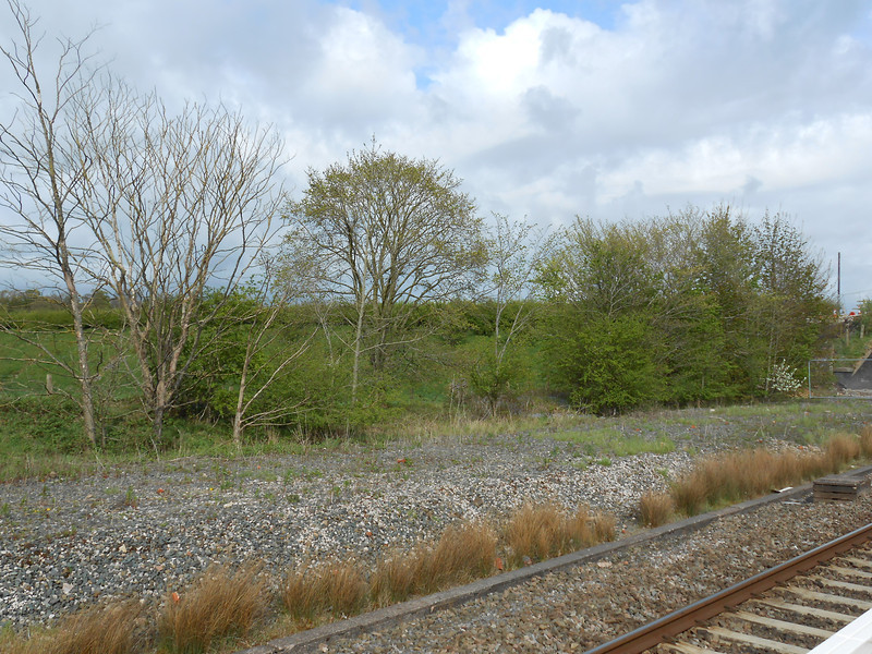 Picture by Liz <br /> <br /> Shows the rural nature across from the Preston Bound platform