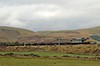 60046 William Wilberforce, 6E28, Crawford, Sat 13 October 2007 1 - 1453.  EWS's 1423 Dalzell - Lackenby empty steel.