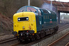 55022 Royal Scots Grey, 0Z55, Hest Bank, 22 February 2008 - 1220   The Deltic charges round the Hest Bank curve en route from its base on the East Lancashire Rly to Carnforth.  It was booked to work Spitfire's Deltic Pioneer from Liverpool to Edinburgh and back via the ECML, and was going to Steamtown to pick up the stock and a WCRC 47.