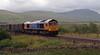 66718 Gwyneth Dunwoody, 4M91, Ribblehead, 6 August 2008 - 1749    The Metronet-liveried loco climbs to Blea Moor with GBRf's 1254 West Burton Power Station gypsum to Newbiggin.