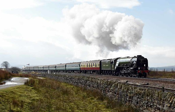 60163 Tornado, 2Z53, Blea Moor, Wed 15 February 2017 1 - 1137. Northern's 1044 Skipton - Appleby, which called only at Settle and Kirkby Stephen.  This was the first northbound plandampf working of the day, and was much busier than the second, which left Skipton at 1715.
