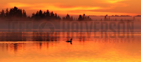 Little Trout Lake - Wisconsin