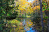 Autumn Watercolors Reflected l