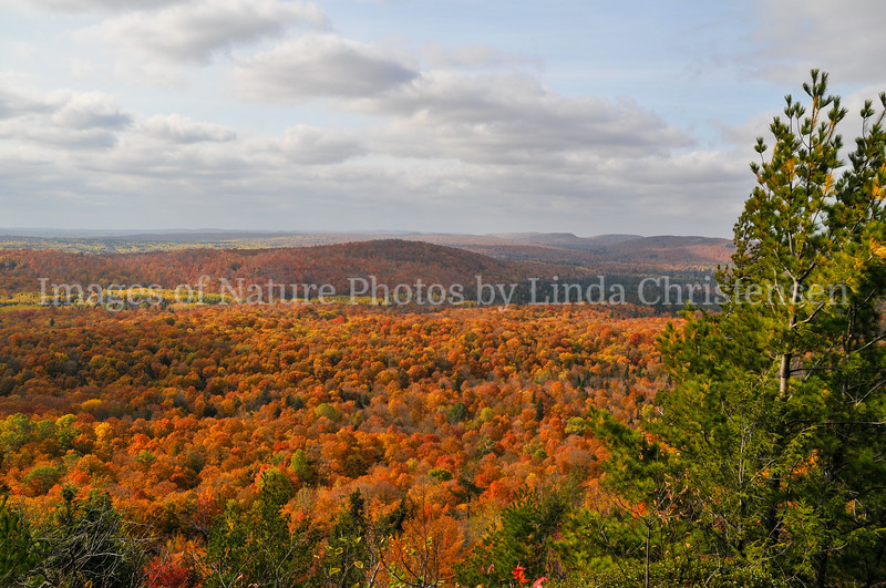 Wolf Mountain Fall View