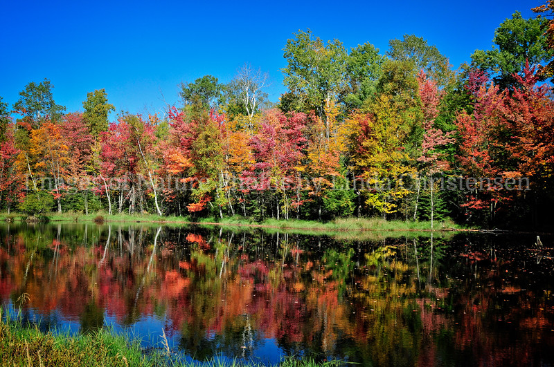 Autumn Water Colors
