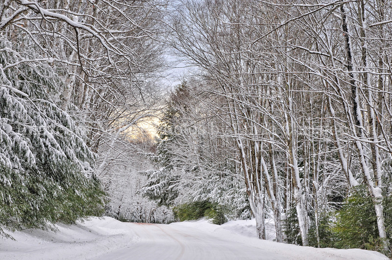Road Home in Winter