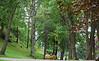 Alesund Park