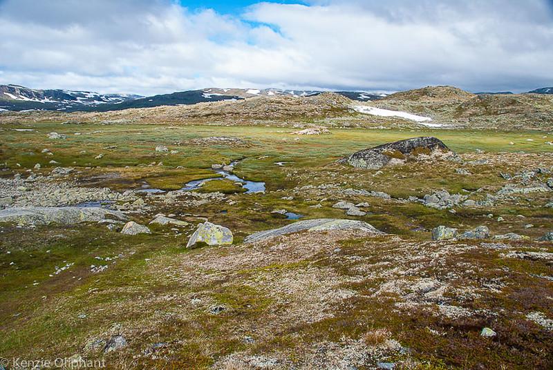 Finse glacier hike