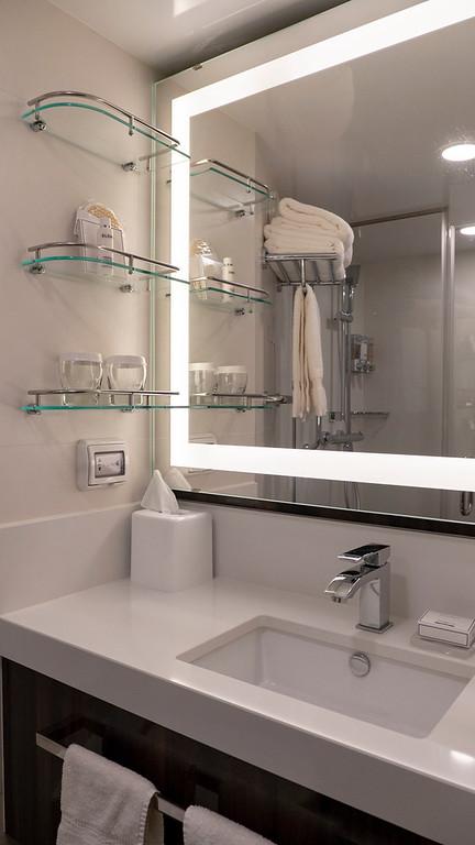 Bathroom in Nieuw Statendam verandah stateroom
